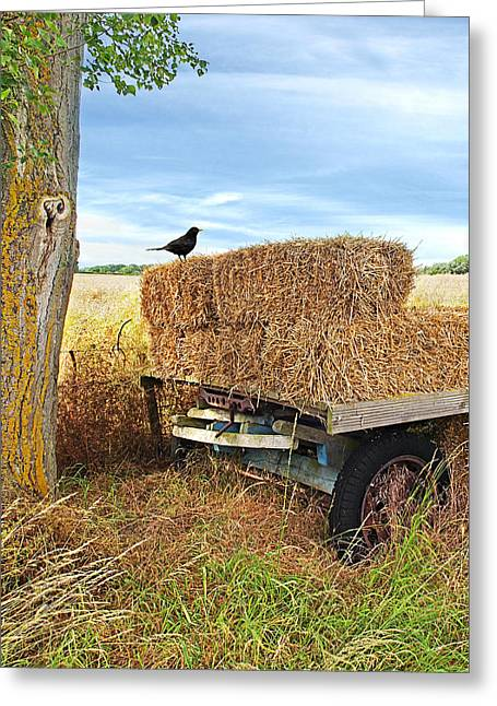 Old Hay Wagon Vertical Greeting Card by Gill Billington