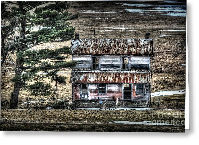Old Home Place With Birds In Front Yard Greeting Card by Dan Friend