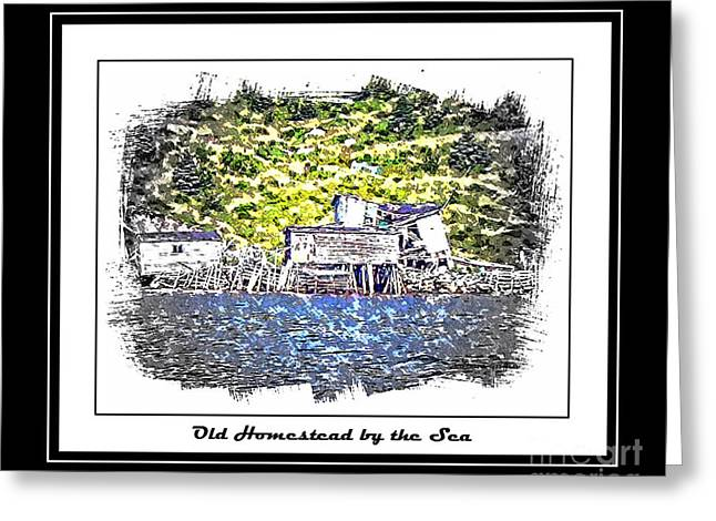 Old Homestead By The Sea Greeting Card