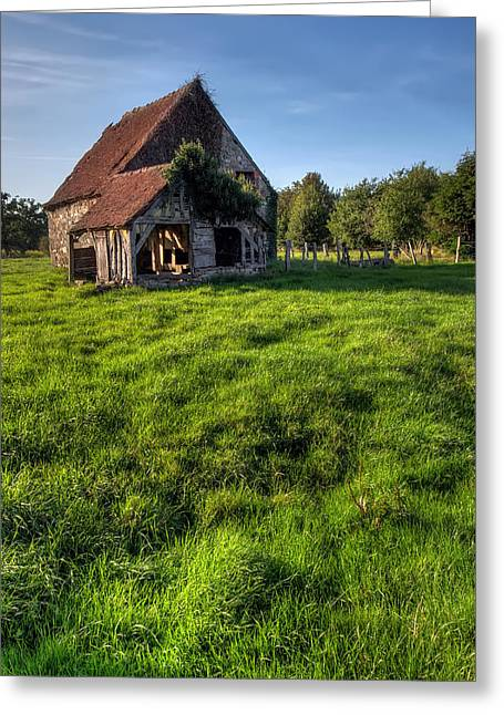Old House In Summer  Greeting Card by Ioan Panaite