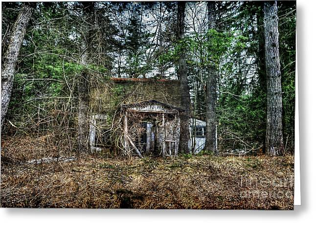 Old House With Overgrown Brush Greeting Card by Dan Friend