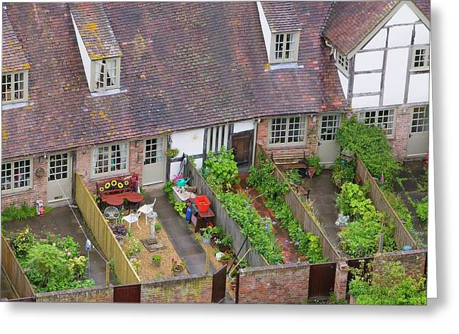 Old Houses And Back Gardens Greeting Card by Ashley Cooper