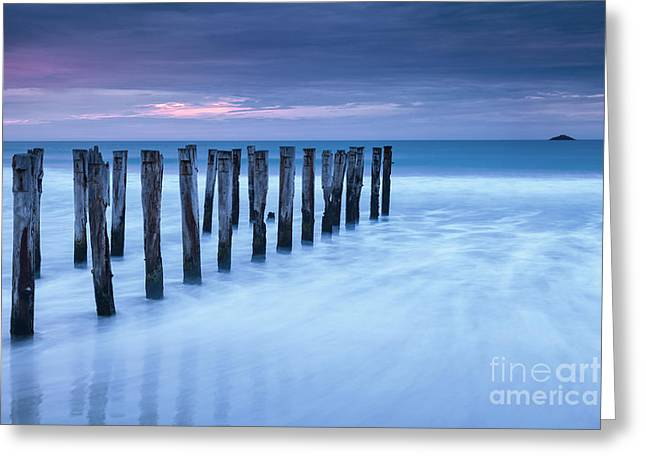 Old Jetty Pilings Dunedin New Zealand Greeting Card by Colin and Linda McKie