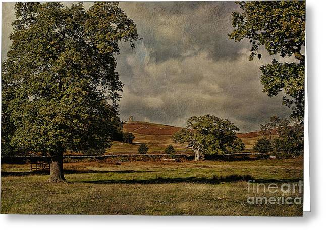 Old John Bradgate Park Leicestershire Greeting Card by John Edwards