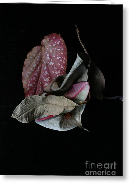 Old Leaves. Greeting Card by Tanya Polevaya