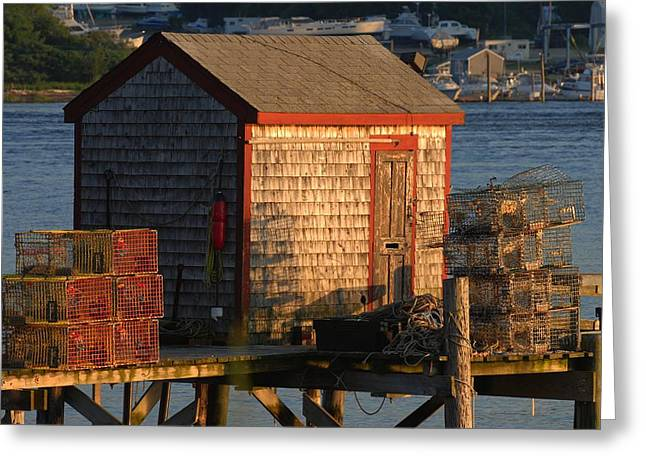 Old Lobster Shack Greeting Card
