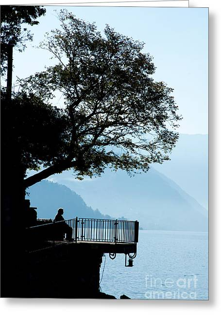 Old Man Sitting In Shade Of Tree Overlooking Lake Como Greeting Card