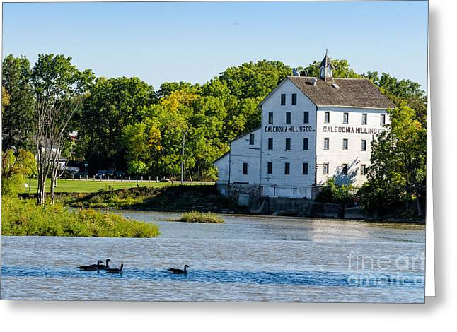 Old Mill On Grand River In Caledonia In Ontario Greeting Card