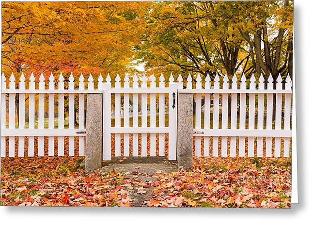 Old New England White Picket Fence Greeting Card by Edward Fielding