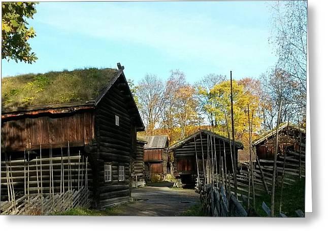 Old Norwegian Houses Greeting Card