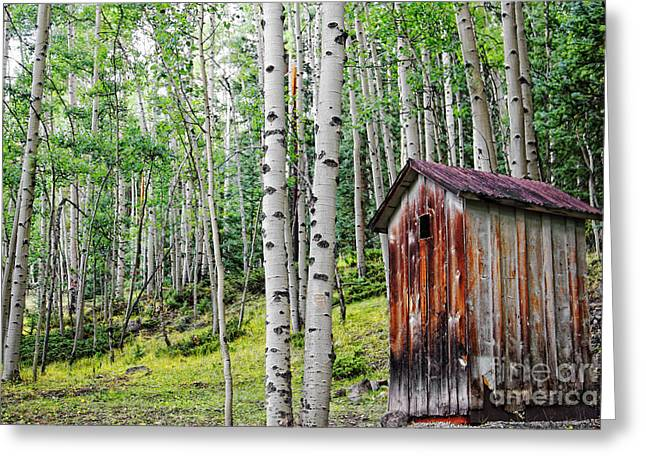 Old Outhouse Among Aspens Greeting Card
