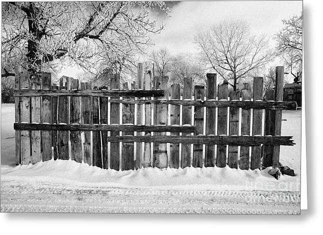 old patched up wooden fence using old bits of wood in snow Forget Saskatchewan  Greeting Card by Joe Fox