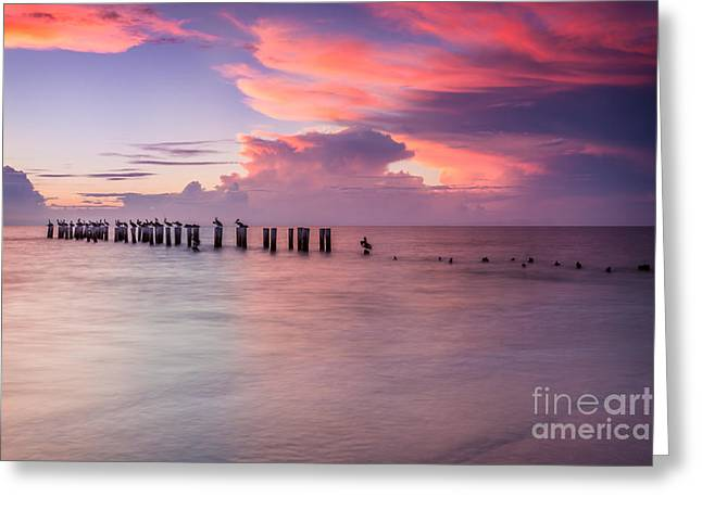 Old Naples Pier Sunset Greeting Card