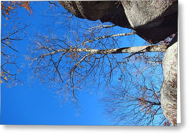 Old Rag Hiking Trail - 121211 Greeting Card by DC Photographer