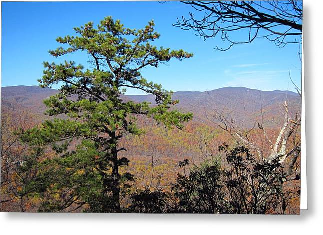Old Rag Hiking Trail - 121221 Greeting Card by DC Photographer