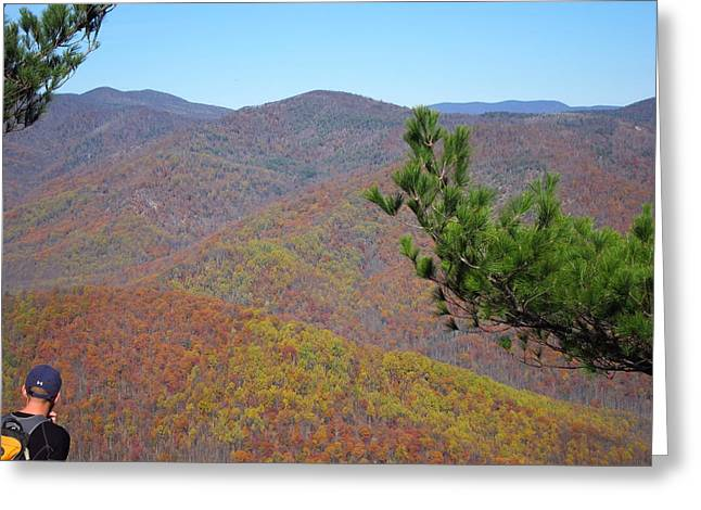 Old Rag Hiking Trail - 121222 Greeting Card by DC Photographer