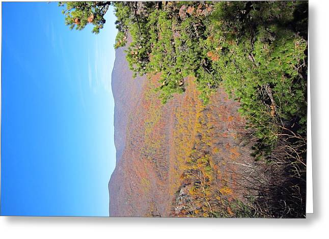 Old Rag Hiking Trail - 121224 Greeting Card by DC Photographer