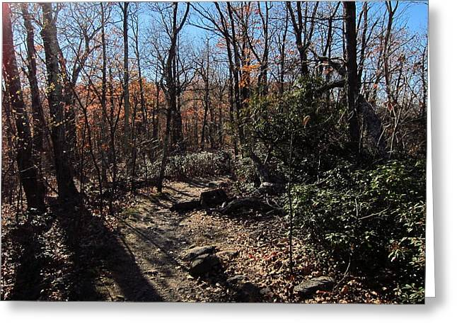 Old Rag Hiking Trail - 121248 Greeting Card by DC Photographer