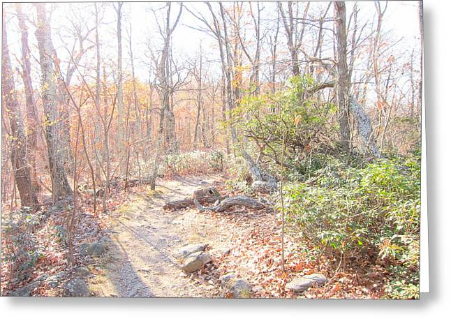 Old Rag Hiking Trail - 121249 Greeting Card by DC Photographer