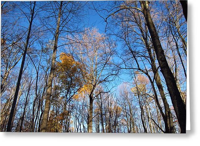 Old Rag Hiking Trail - 121253 Greeting Card