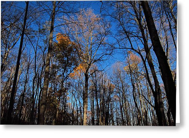Old Rag Hiking Trail - 121254 Greeting Card by DC Photographer