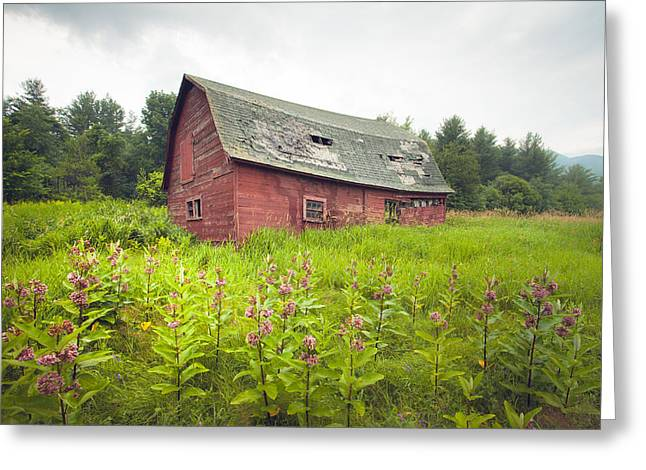 Barn Landscape Photographs Greeting Cards - Old red barn in a field - Rustic landscapes Greeting Card by Gary Heller