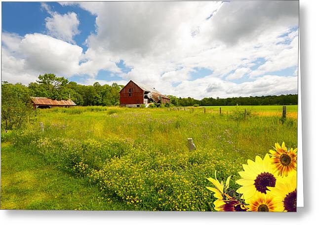 Old Red Barn. Greeting Card by Kelly Nelson