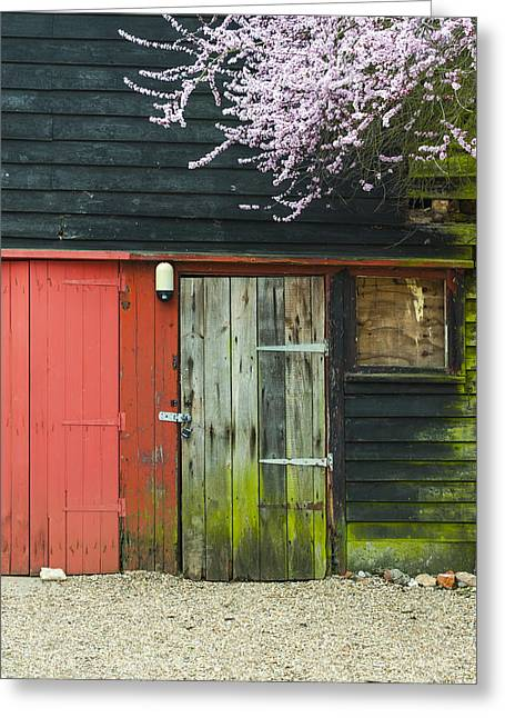 Old Shed Greeting Card by Svetlana Sewell