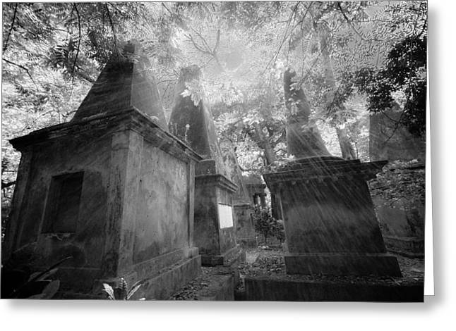 Old South Park Street Cemetery In Kolkata Greeting Card by BJ Graf