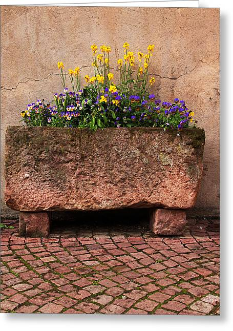 Old Stone Trough And Flowers In Alsace France Greeting Card by Greg Matchick