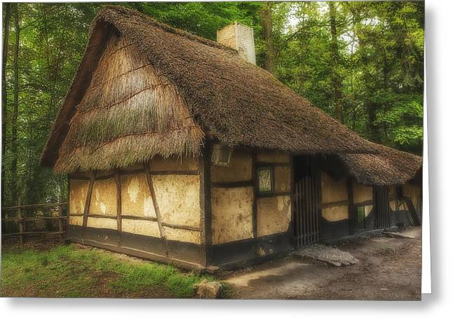 Old Thatched Homestead Greeting Card by Gigi Embrechts
