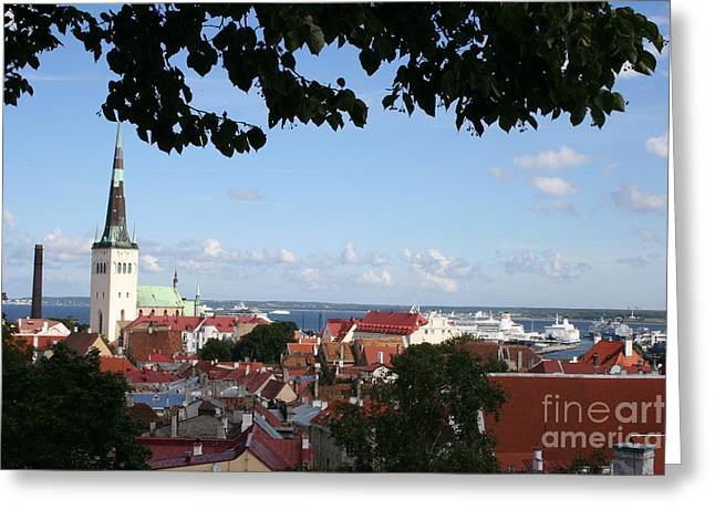 Old Town And Harbor - Tallinn Greeting Card by Christiane Schulze Art And Photography