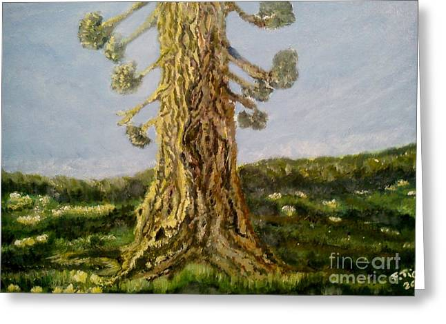 Old Tree In Spring Light Greeting Card