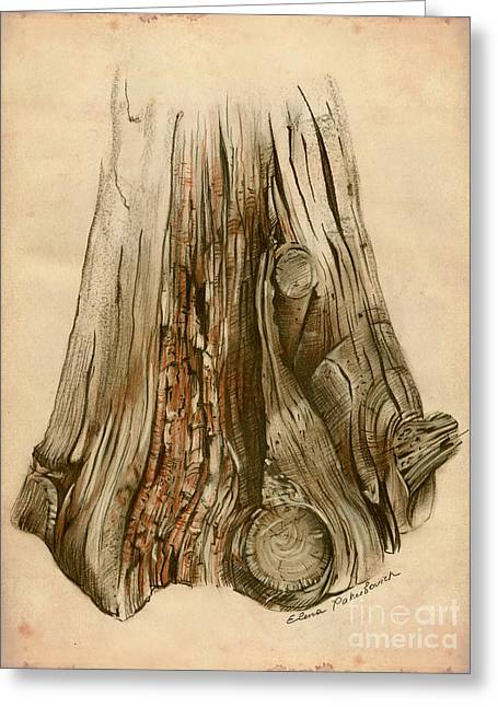 Old Tree Stump - Sketch Chalk Charcoal Sepia - Elena Yakubovich Greeting Card