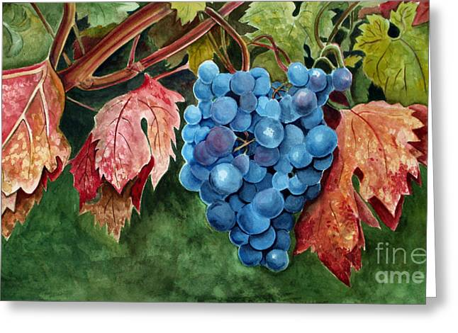 Old Vine Zinfandel Greeting Card