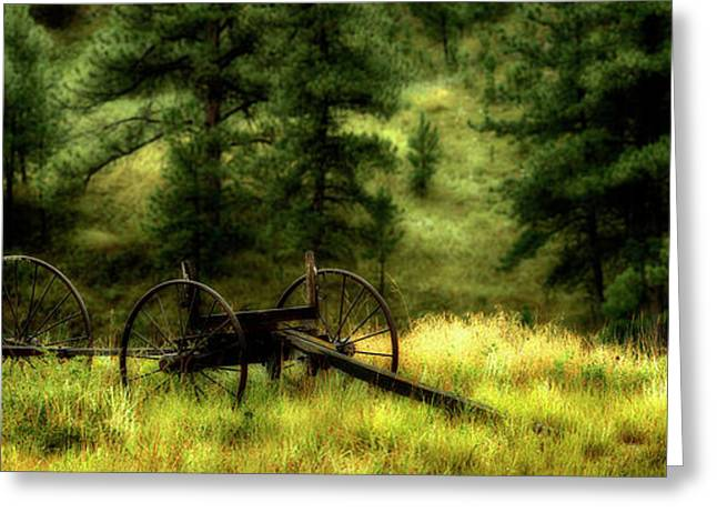 Old Wagon Frame In The Black Hills Greeting Card