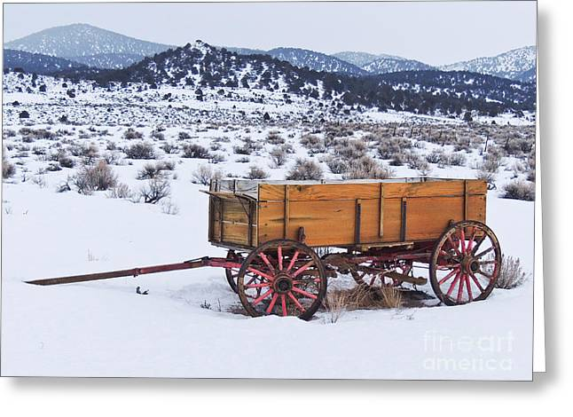 Old Wagon In Snow Greeting Card