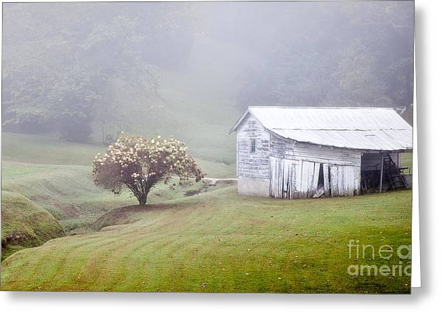 Old Weathered Wooden Barn In Morning Mist Greeting Card