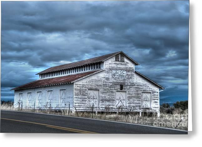 Old White Barn Greeting Card by Juli Scalzi