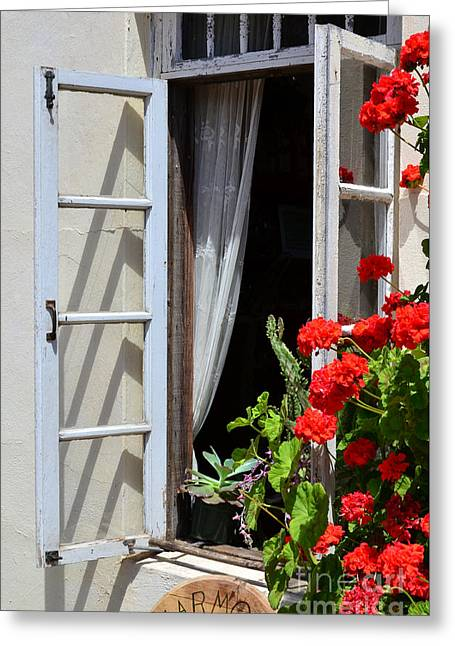 Greeting Card featuring the photograph Old Window by Debby Pueschel