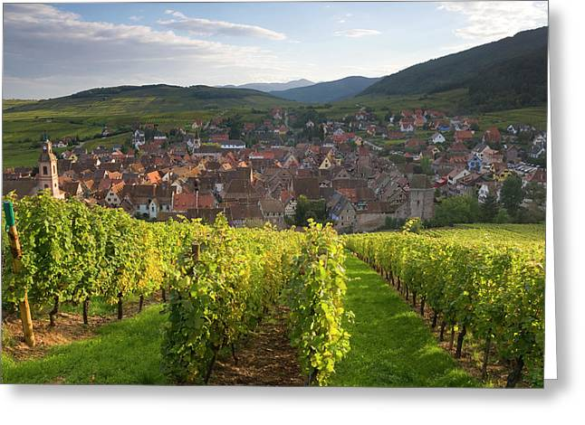 Old Wine Town Of Riquewihr Greeting Card by Peter Adams
