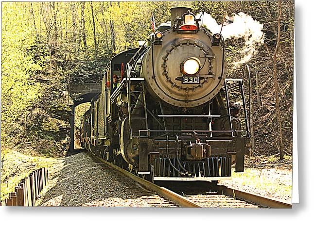 Ole' #630 Steam Train Greeting Card by Tammy Schneider