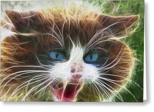 Ole Blue Eyes - Square Version Greeting Card
