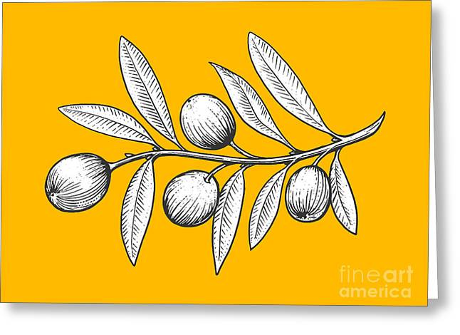 Olive Branch Engraving Style Vector Greeting Card by Alexander p