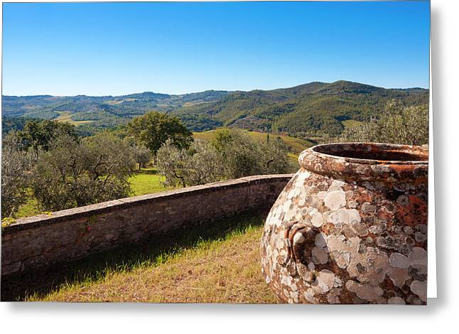 Olive Groves, Greve In Chianti Greeting Card