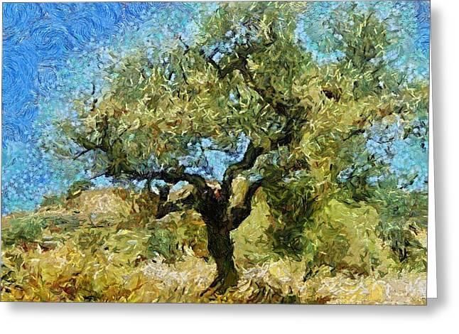 Olive Tree On Van Gogh Manner Greeting Card