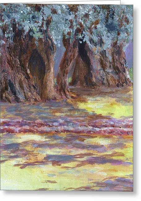Olive Trees Garden Of Gethsemane Greeting Card by Nigel Radcliffe