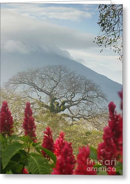 Ometepe Island 1 Greeting Card by Rudi Prott