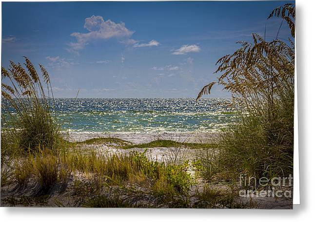 On A Clear Day Greeting Card by Marvin Spates