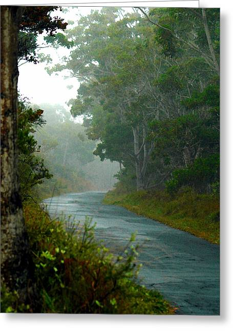 On A Country Road Greeting Card by Lehua Pekelo-Stearns
